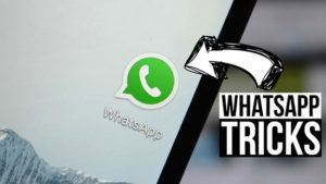How to send a WhatsApp chat without saving the contact